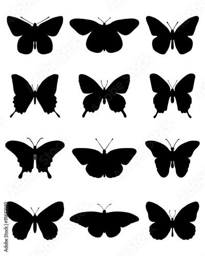 Fototapeta  Black silhouettes of butterflies, vector