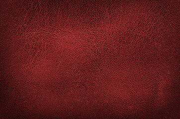 Fototapeta high resolution red leather texture