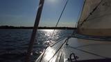 Sailboat nose 09182