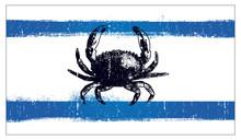 Grunge Vintage Summer Flag With Crab
