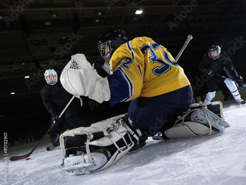 Plakat bramkarz hokejowy