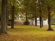 Herbstliche Farbenpracht unter den Baumkronen
