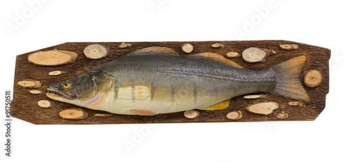 Poster Peche Decoration fake fish