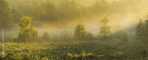 Fototapeta beautiful, misty morning over the valley obraz na płótnie