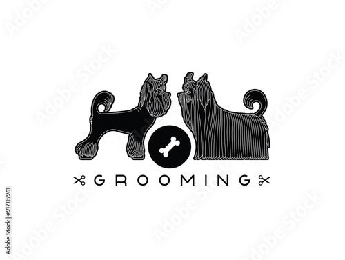 Fotografía  Pet grooming 5