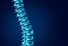 Human Spine Concept