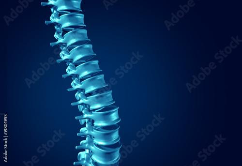 Plakat  Human Spine Concept