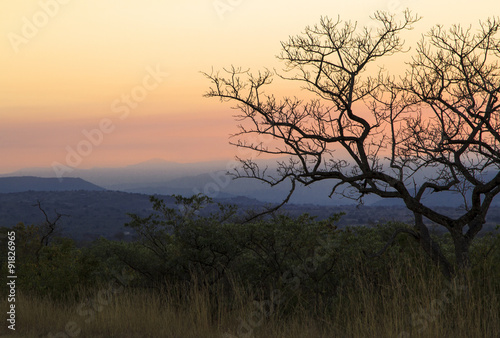 Obrazy na płótnie Canvas Sunset over the african bush