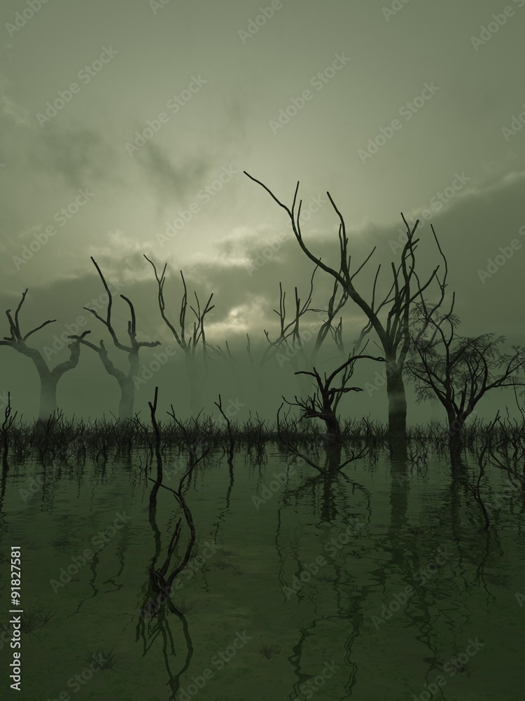 Photo Art Print Fantasy Illustration Of A Misty Swamp With