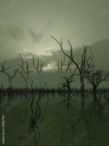 Fotografía Fantasy illustration of a misty swamp with twisted trees standing in the water,