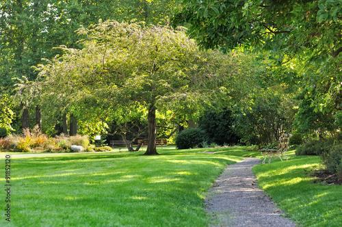allée traversant un parc verdoyant