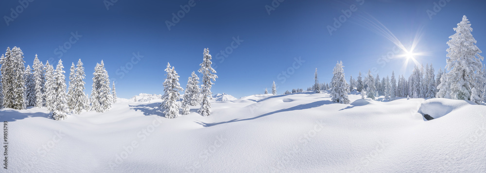 Fototapety, obrazy: Winterpanorama - Verschneite Winterlandschaft