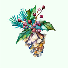 Watercolor Vector Fir-cone Wit...