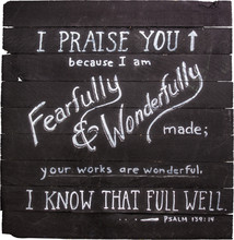 Psalm 139:14 Hand Painted On Wooden Shim Canvas