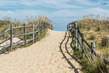Beach Pathway At Sandbridge Beach In Virginia Beach, Virginia