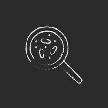 Microorganisms Under Magnifier Icon Drawn In Chalk.