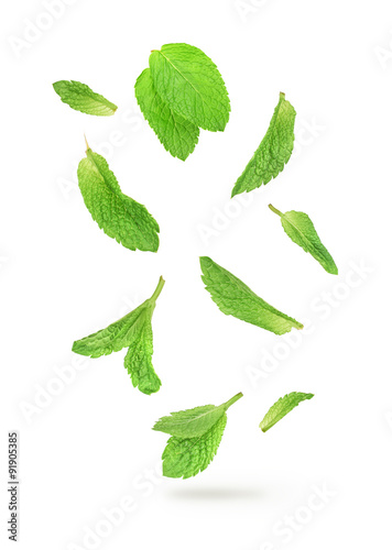 green mint leaves falling in the air isolated on white backgroun