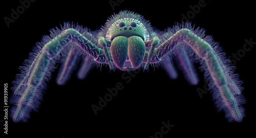 Valokuva  SEM style illustration of a spider