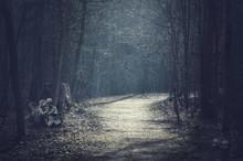 Halloween Landscape. Dark Fore...