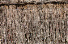 Thatch Fence Close Up