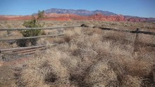 Tumbleweeds And Fence From Above