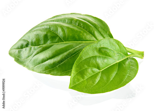 Cuadros en Lienzo Fresh organic basil leaves isolated on white background