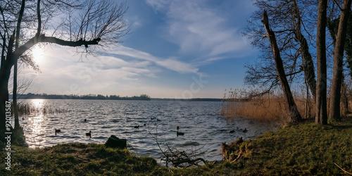 Abendstimmung am winterlichen Wandlitzer See Poster