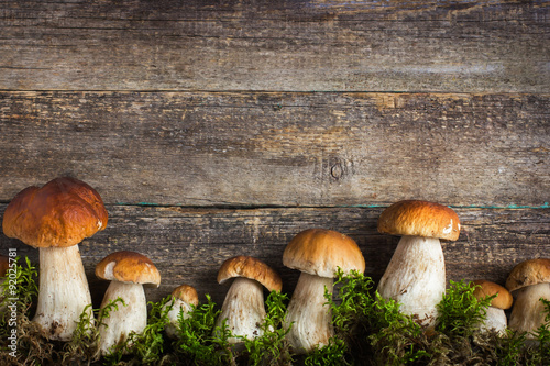 food background with boletus mushrooms and moss Canvas Print