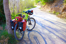 MTB Bicycle Touring Bike In A Pine Forest