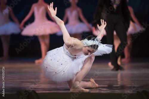 Valokuvatapetti Prima ballerina white swan