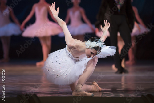 Prima ballerina white swan Canvas-taulu