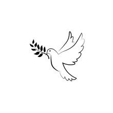 Pigeon Olive Peace