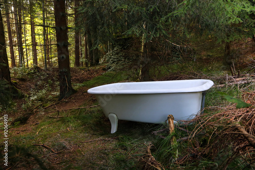 Foto Bath tub in the forest