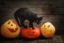 Halloween Pumpkin And Black Cat On Wooden Background