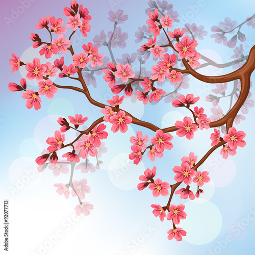 Background with sakura blossoms Poster