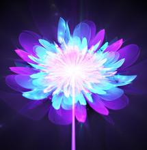 Illustration Fractal Glowing Background Bright Flower On A Stalk