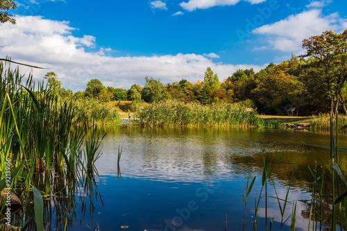Fototapeta Amazing colorful landscape with lake and park, early fall, Lviv, Ukraine obraz na płótnie