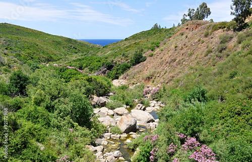 Fotografía  algerie...littoral en kabylie