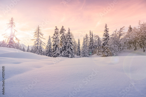 Winter landscape near Vogel ski center