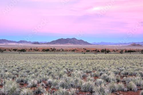 Tuinposter Purper Desert Landscape - NamibRand, Namibia