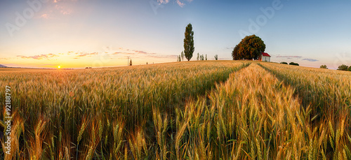 Foto auf Gartenposter Landschappen Sunset over wheat field with path and chapel in Slovakia - panor