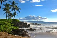 Tropical Hawaiian Beach With P...