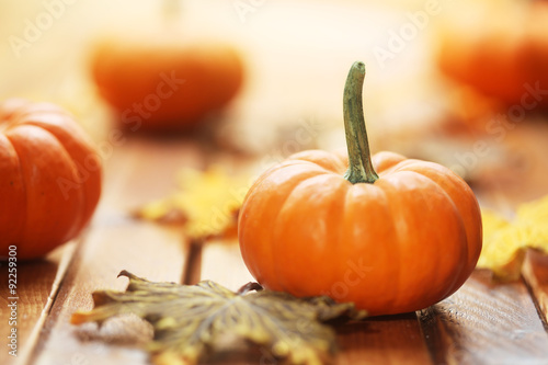 Autumn pumpkin background Canvas-taulu
