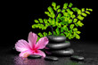 beautiful spa concept of pink hibiscus flower, fern branch and s