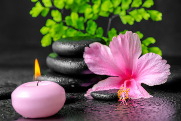Obraz na płótnie Canvas beautiful spa concept of pink hibiscus flower, fern branch, cand