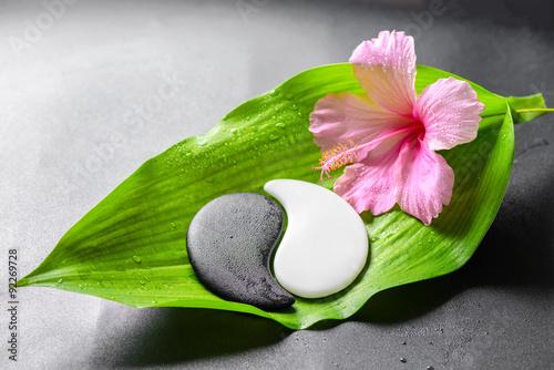 Plakat piękna koncepcja spa różowy kwiat hibiskusa i Yin-Yang z ul