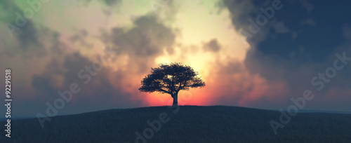 Tuinposter Landschappen sunset and tree