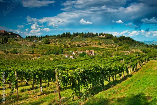 San Gimignano with vineyard - 92319900