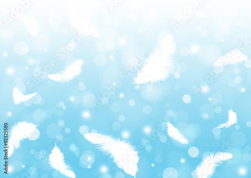Fotografie, Obraz  鳥の羽毛の背景