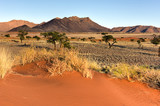 Fototapeta Sawanna - Desert Landscape - NamibRand, Namibia